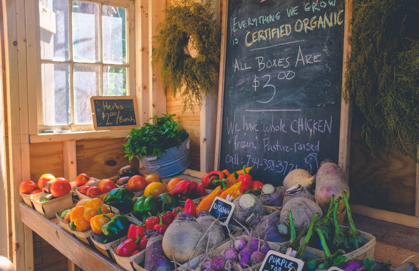 Organic lifestyle budget tips